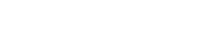 ANDI Veneto Logo